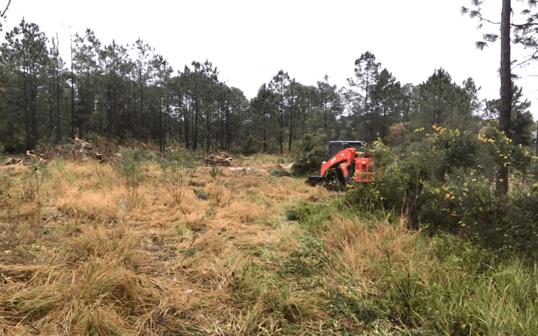 Clearing Property Lot for a New Custom Home Build